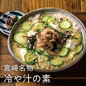 夏メシといえば宮崎名物 ひや汁 180g|tamachanshop