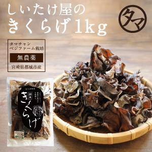 国産きくらげ 1kg 業務用 乾燥 干し 木耳 キクラゲ きのこ キノコ 送料無料