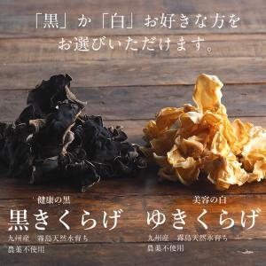 国産きくらげ 50g 業務用 乾燥 干し 木耳 キクラゲ お試し ポイント消化 ダイエット きのこ キノコ 送料無料|tamachanshop|02
