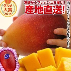 宮崎完熟マンゴー大玉 1玉 2018年度 フレッシュ 産地直...