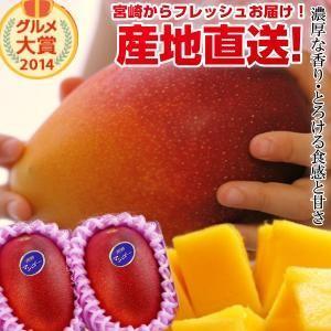宮崎完熟マンゴー大玉 2玉 2021年度 フレッシュ 産地直送 くだもの 果物 フルーツ マンゴー ...