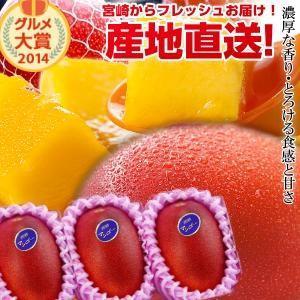 宮崎完熟マンゴー中玉 3玉 2021年度 フレッシュ 産地直送 くだもの 果物 フルーツ マンゴー ...