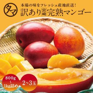 訳あり宮崎完熟マンゴー どっしり800〜1000g詰め 20...