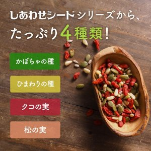 ミックスシード 無添加 250g 4種類 かぼちゃの種 ひまわりの種 クコの実 松の実 パンプキン ゴジベリー 送料無料|tamachanshop|02