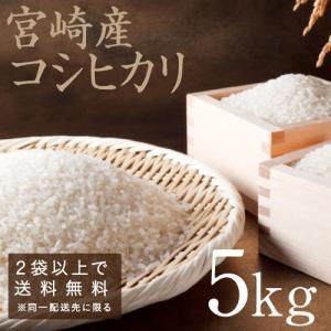 こしひかり 29年度産 宮崎県産 5kg 九州 コシヒカリ|tamachanshop