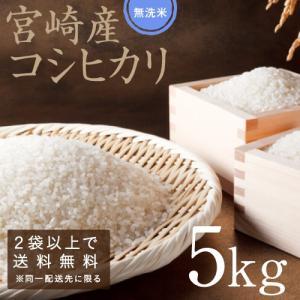 こしひかり 無洗米 29年度産 宮崎県産 5kg 九州 コシヒカリ|tamachanshop