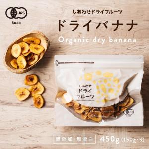 ドライ バナナチップス 450g 無添加 ドライフルーツ くだもの 果物 ドライ フルーツ バナナ フィリピン 送料無料|tamachanshop