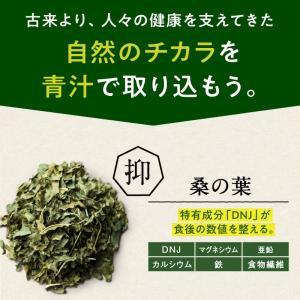 ななつのしあわせ青汁1箱 (30包) 有機JAS認定 オーガニック認証 7種類 健康 青汁 大麦若葉 抹茶 ボタンフウソウ 送料無料|tamachanshop|03
