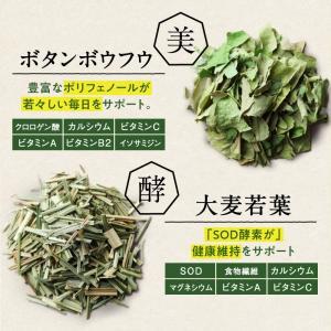 ななつのしあわせ青汁1箱 (30包) 有機JAS認定 オーガニック認証 7種類 健康 青汁 大麦若葉 抹茶 ボタンフウソウ 送料無料|tamachanshop|04