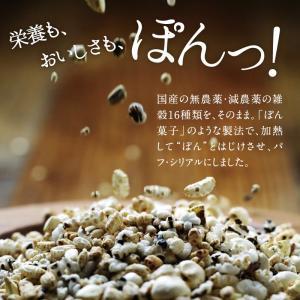 シリアル  ぽんぽこぽん 栄養豊富 16種類 雑穀 パフ シリアル 送料無料|tamachanshop|03
