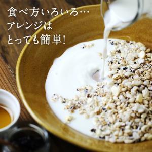 シリアル  ぽんぽこぽん 栄養豊富 16種類 雑穀 パフ シリアル 送料無料|tamachanshop|04