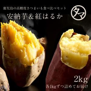 安納芋 & 紅はるか の鹿児島 高糖度 お芋セット 合計3kg 詰め さつまいも|tamachanshop
