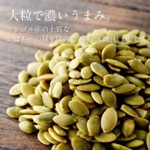 かぼちゃの種 500g ロースト 無塩 無油 素焼き かぼちゃ 種 パンプキン シード 送料無料|tamachanshop|02
