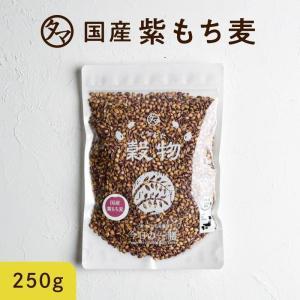 紫もち麦 200g 雑穀 希少な 国産 食物繊維 ポリフェノール 送料無料|tamachanshop