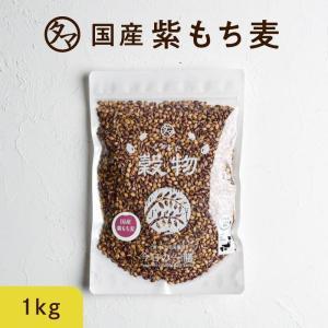 紫もち麦 1kg 29年度産 雑穀 希少な 国産 食物繊維 ポリフェノール 送料無料|tamachanshop