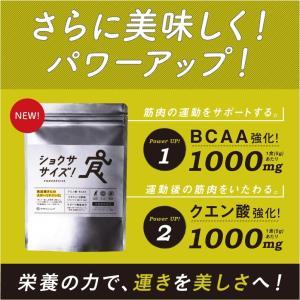進化したスポーツ飲料 ショクササイズ エナジー×スポーツ 飲料 ドリンク ノンカフェイン 砂糖不使用 送料無料|tamachanshop|02