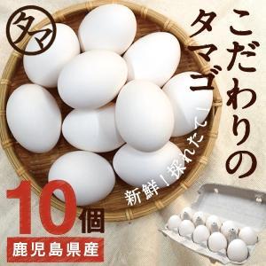 霧島山麓 たまご 10個 ビタミンE 10倍 タマゴ 鹿児島県 九州 お取り寄せ