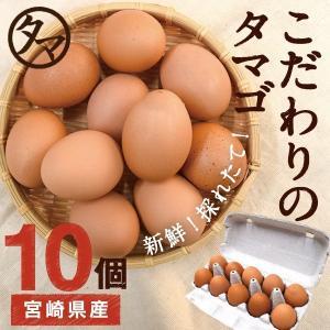 宮崎健康タマゴ10個 こだわりの飼料とマイナスイオン水で育てた濃厚な味わいのタマゴ