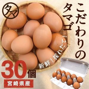 宮崎 健康 タマゴ 30個 こだわりの飼料 マイナスイオン水 濃厚な味わい たま ご 送料無料