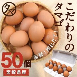 宮崎 健康 タマゴ 50個 こだわりの飼料 マイナスイオン水 濃厚な味わい たま ご 送料無料