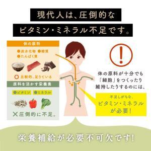 スムージー 母なるスムージー 150g ダイエット 葉酸 美容 野菜 フルーツ 酵素 栄養 全しぼり グリーン スムージー 粉末 ドリンク 栄養機能食品 送料無料|tamachanshop|05