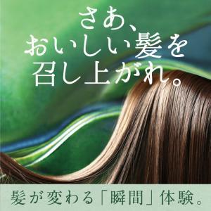 髪サラダ ヘアオイル 洗い流さない トリートメント コスメ ヘアケア ノンシリコン アルガンオイル 送料無料|tamachanshop|04