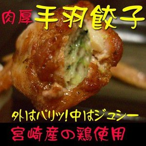 宮崎産の使用 肉厚手羽餃子〜10本入り〜ジューシーでやわらか!|tamachanshop
