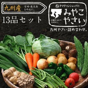 野菜セット 九州産 13品 宮崎産たまご付き|tamachanshop