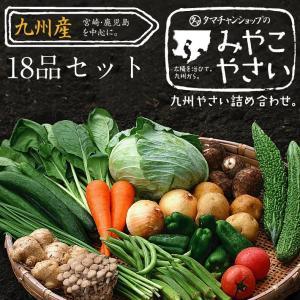 野菜セット 九州産 18品 宮崎産たまご付き|tamachanshop