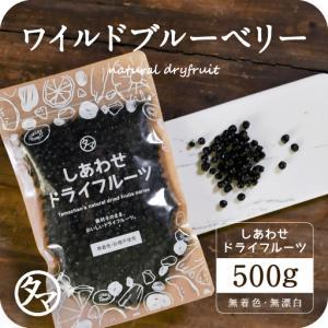 ワイルドブルーベリー 500g アメリカ産 ブルーベリー ドライフルーツ 送料無料 数量限定入荷|tamachanshop