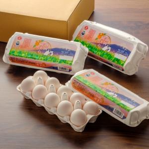 たまごホソヤ養鶏場 静岡産まれ 10個×3p|tamagohosoya