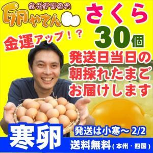 大寒卵 さくら卵 30個 あすつく 純国産鶏 産地直送 信州産 本州四国 送料無料 卵かけご飯 お菓子作り