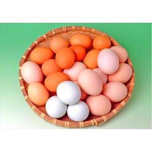 初回限定で3種のたまごが味わえる食べ比べセット!  発送日の朝に収穫した、新鮮な有精卵を味わったこと...