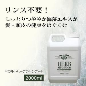 ぺカルトハーブシャンプーH(詰替用2リットル) ぺカルト化成の無添加石鹸シャンプー 合成界面活性剤・石油由来原料・シリコン・ポリマー不使用|tamashii