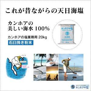 業務用 天日海塩 - カンホアの塩20kg(石臼挽き粉末タイプ) ベトナムの天日塩 太陽と風と人の力だけで造り上げた昔ながらの天日塩(自然海塩)メーカー直送品|tamashii