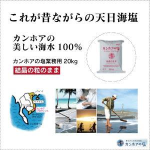 業務用 天日海塩 - カンホアの塩20kg(結晶の粒のまま) ベトナムの天日塩 太陽と風と人の力だけで造り上げた昔ながらの天日塩(自然海塩)メーカー直送品|tamashii