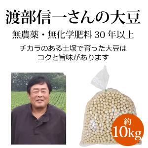 北海道産 無農薬大豆 - 渡部信一さんの大豆約10kg(約kg×10袋) 無農薬・無化学肥料栽培30...