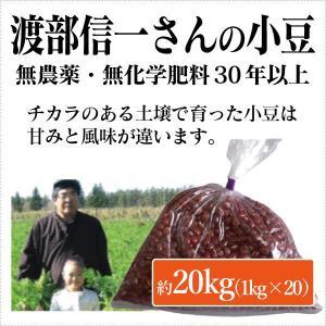 北海道産 無農薬小豆 - 渡部信一さんの小豆約20kg(約1kg×20袋) 無農薬・無化学肥料栽培30年の美味しい小豆 渡部信一さんは化学薬品とは無縁の生産者|tamashii