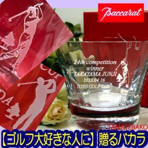 バカラ  ロックグラスペアセット アルクール タンブラー2個 2810591 クリスタルガラス製の商品画像|ナビ
