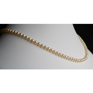 ベビーパール ネックレス ナチュラルゴールド  4-4.5mm 伊勢志摩産 アコヤ真珠  |tamatyan