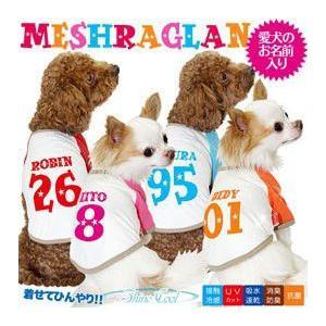 犬服 春 夏 新作 冷感クール ひんやり 冷却 名前入り メッシュラグラン Tシャツ