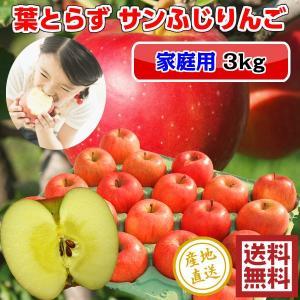 サンふじ りんご 葉とらず 3kg 10-12玉前後 ご家庭用ランク 訳あり 送料無料