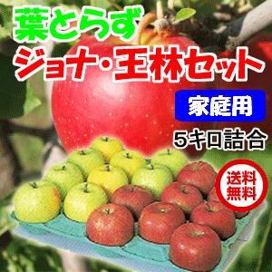 青森県産 りんご 葉とらずジョナゴールドと王林セット 5kg・20玉前後 ご家庭用ランク|tamenobu-store
