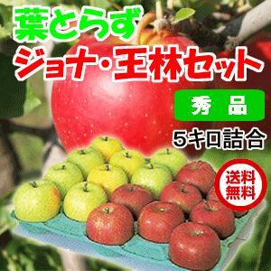 青森県産 りんご 葉とらずジョナゴールドと王林セット 5kg・20玉前後 秀品・贈答用ランク|tamenobu-store
