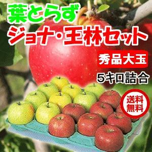 青森県産 りんご 葉とらずジョナゴールドと王林セット 5kg・18玉前後 秀品大玉・贈答用ランク|tamenobu-store