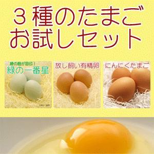 卵 たまご 販売 3種のたまごお試しセット 緑の一番星 有精卵 にんにく卵 30個入り