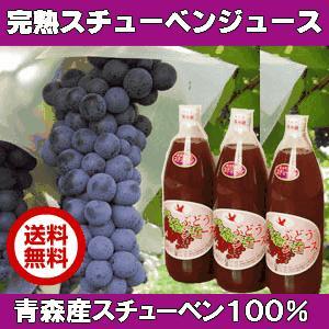 【送料無料】スチューベンぶどうは現在栽培されているぶどうの中で、もっとも甘いと言われる程の糖度をもっ...