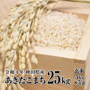 米 お米 25kg 玄米 秋田県産 あきたこまち 29年産新...