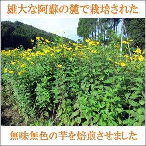 菊芋茶 きくいも茶 国産 2.5gx10袋|tamurafoods|02