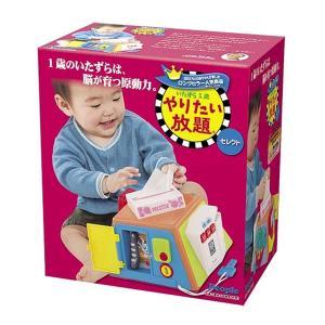 1歳のいたずらは、脳が育つ原動力  思わず目がいく、手が出る、身の回りの実用品そっくりな、いたずらア...